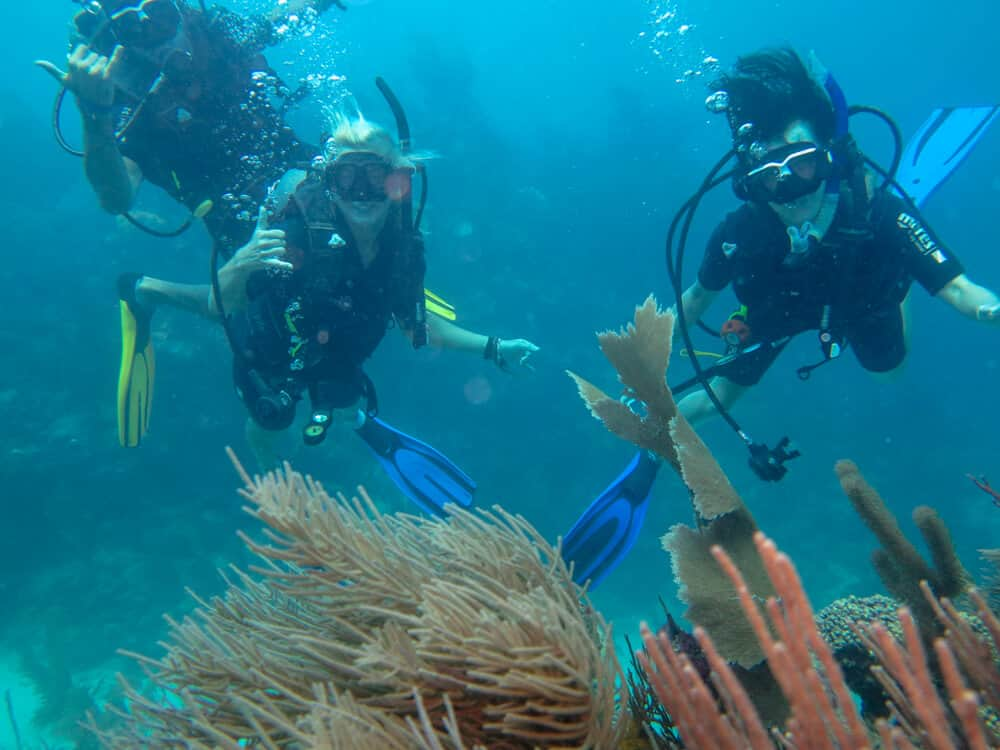 Diving with friends in utila