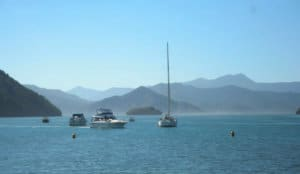 boats in picton