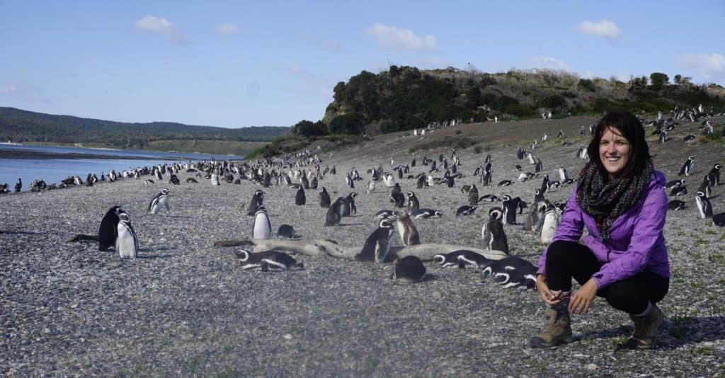 lora with penguins in argentina