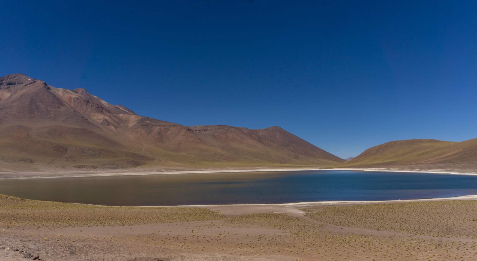 High lagoons in the Atacama Desert
