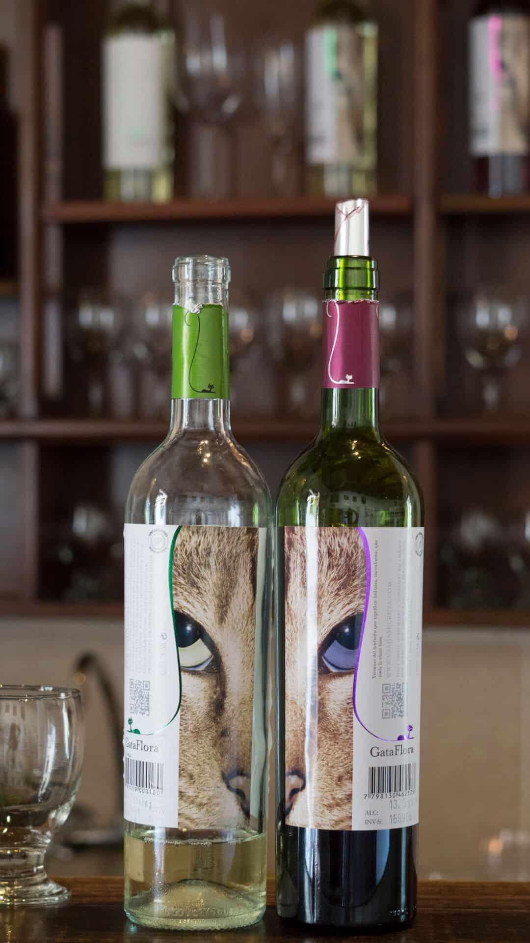wine bottles from Salta, Argentina