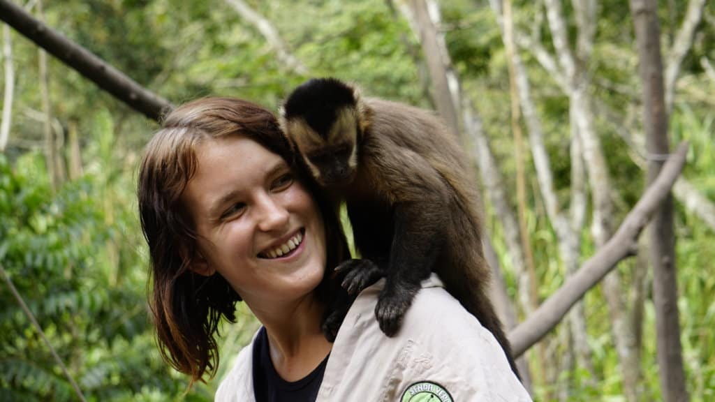 A capuchin monkey on Lora