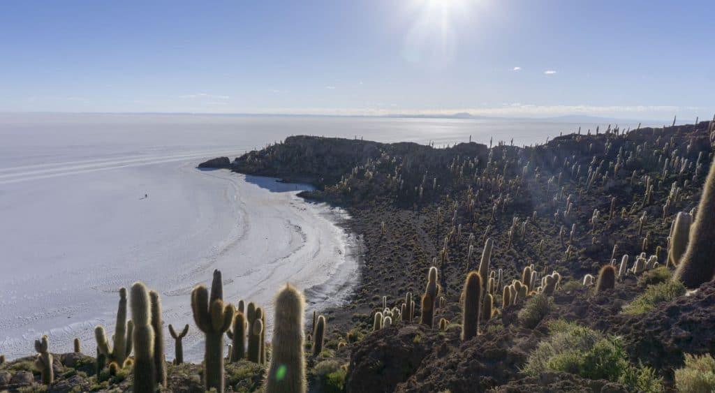 Fish Island on a Bolivia Salt Flats Tour