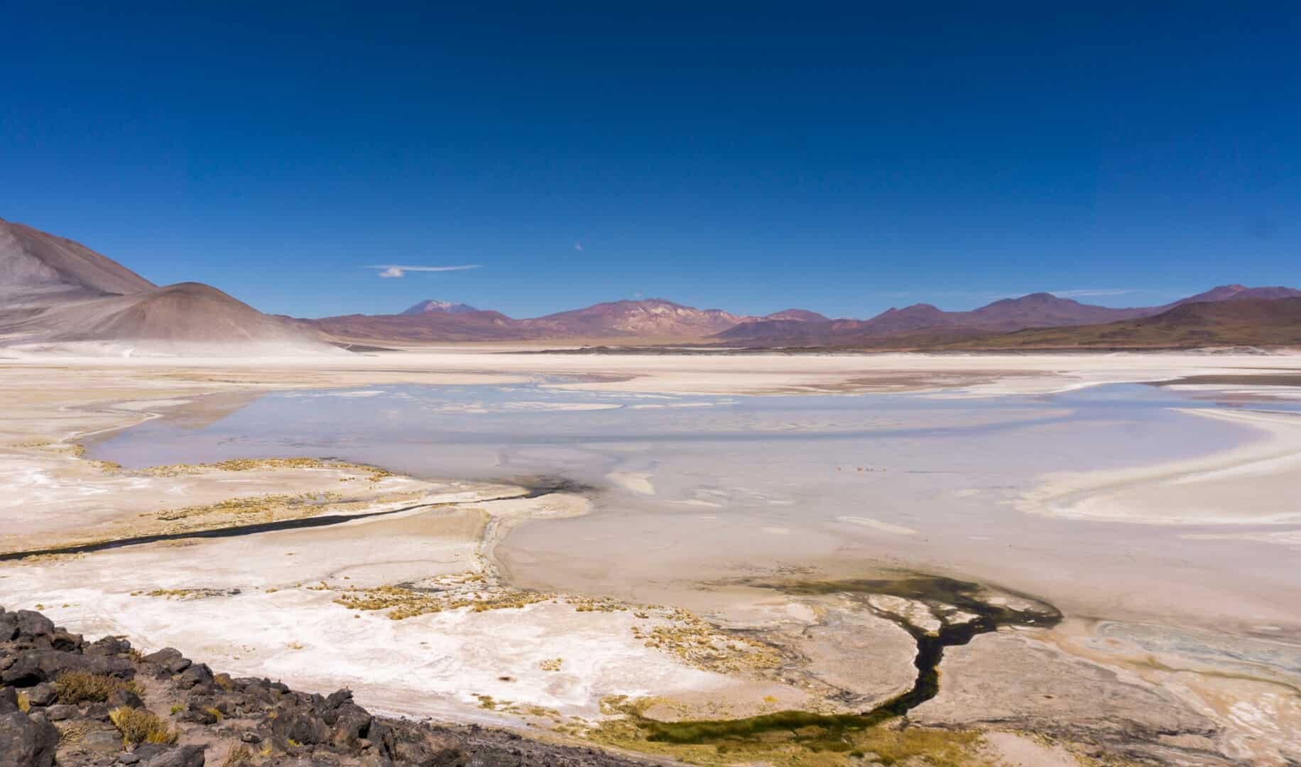 Salt flats and lagoons in the Atacama Desert