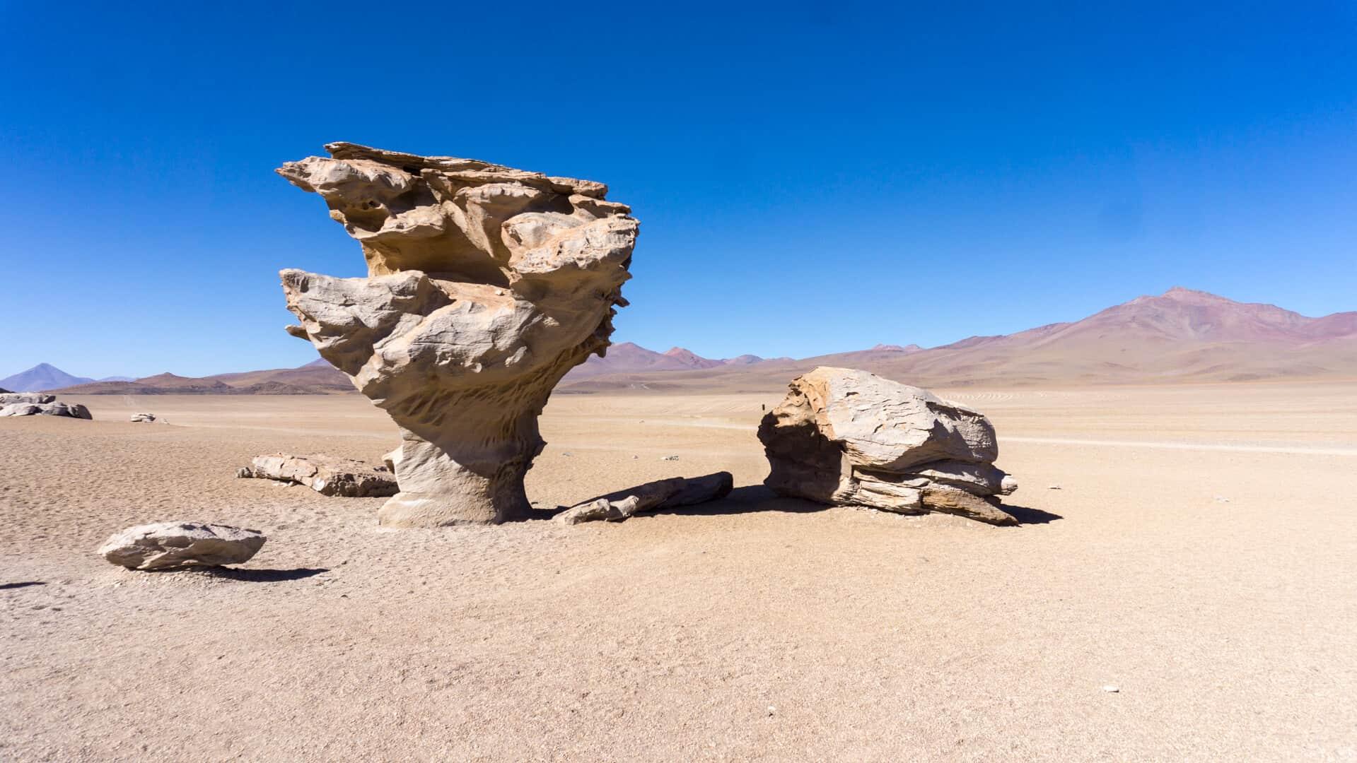 Rock tree in Bolivia