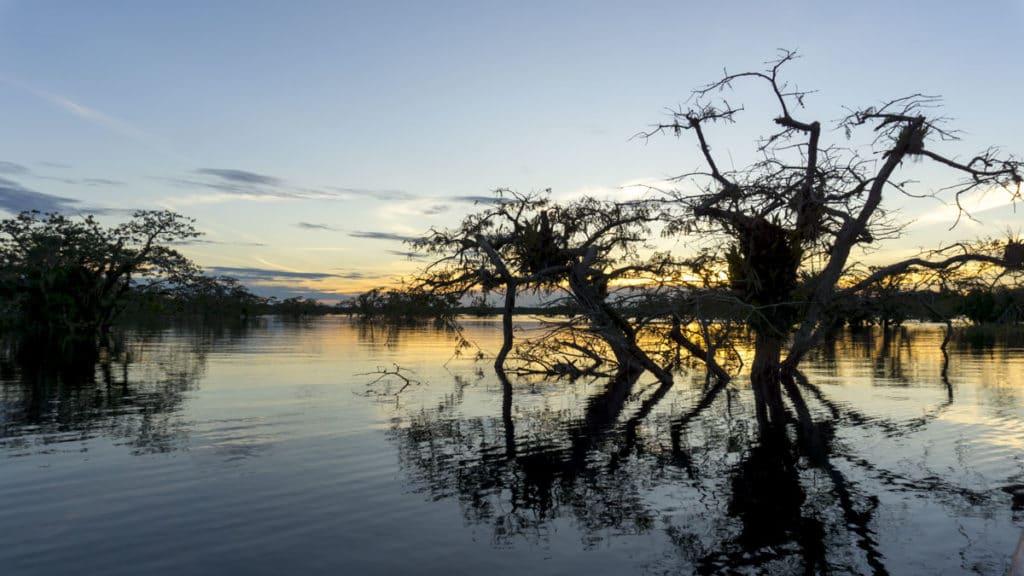 Ecuador Amazon River Cruise