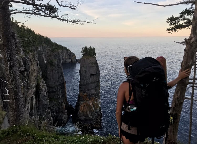 looking over the cliffs of Newfoundland, Canada