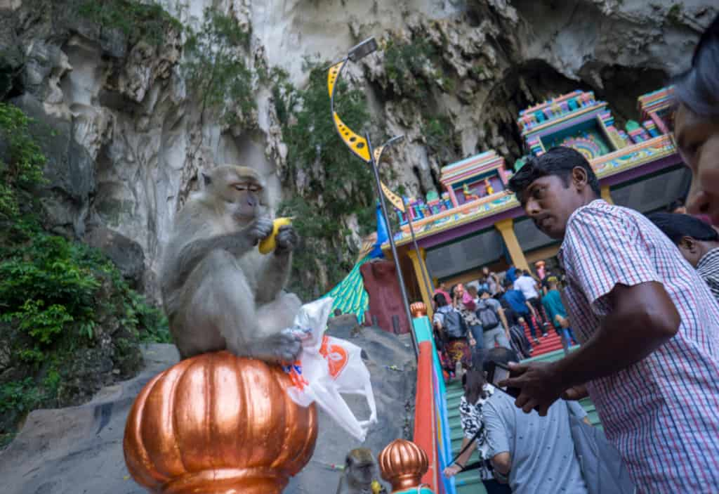batu Caves is one of the best things to do in Kuala Lumpur in 3 days