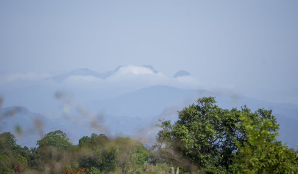 Mountain views at Udawalawe National Park