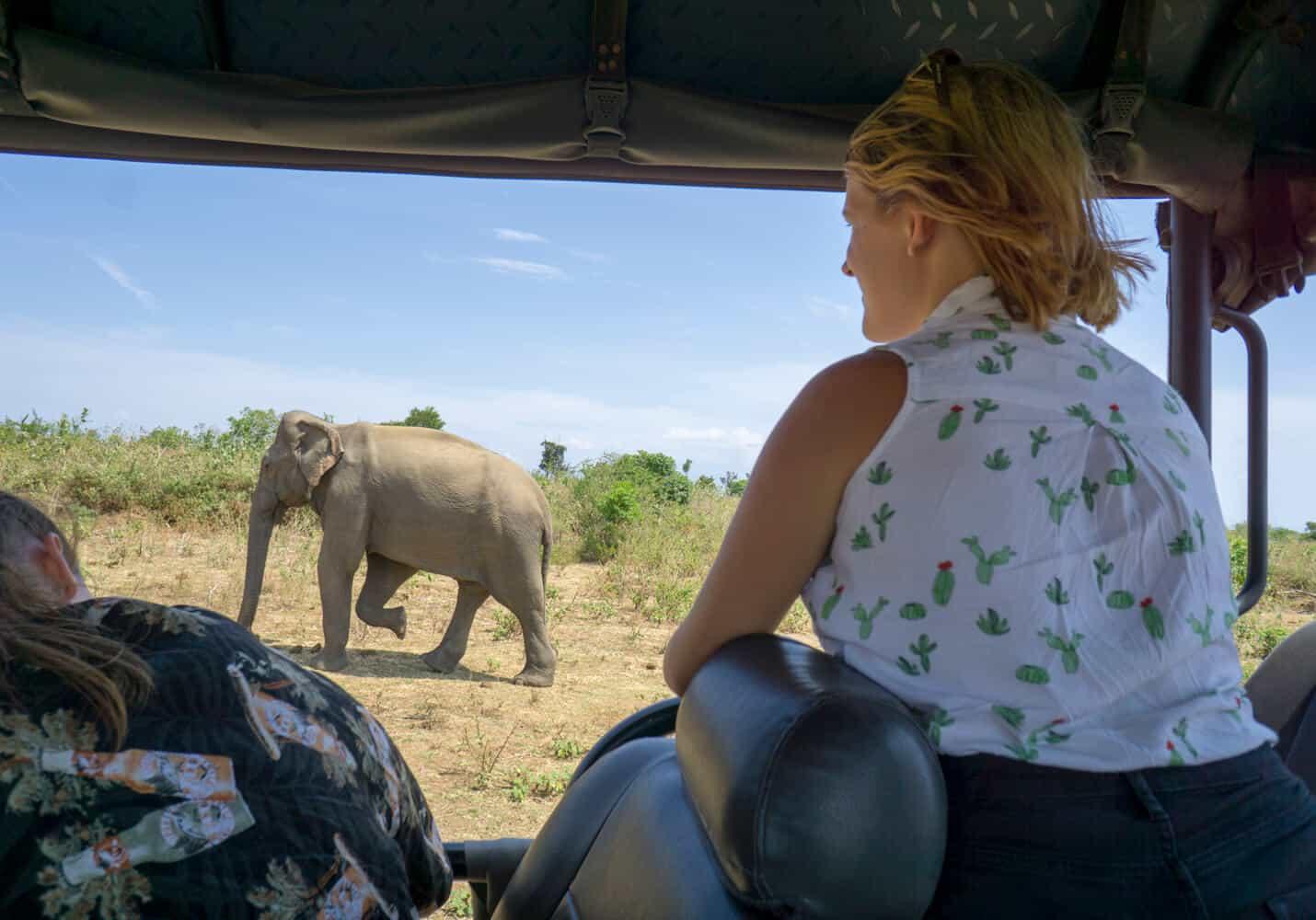 elephant safari in Udawalawe National Park sri lanka