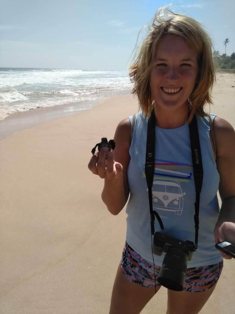 releasing a baby sea turtle as a wildlife encounter in Sri Lanka