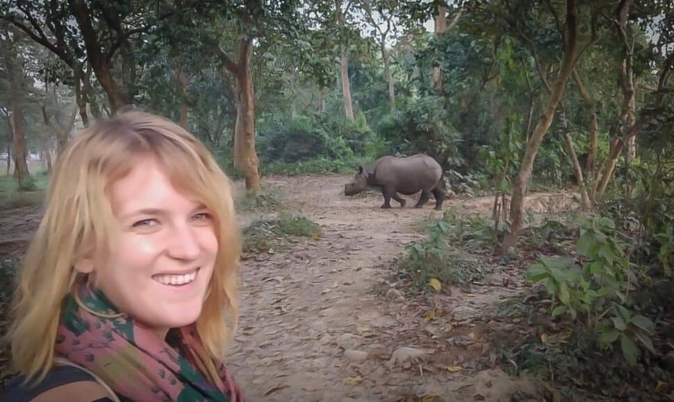 A one horned rhino in chitwan national park