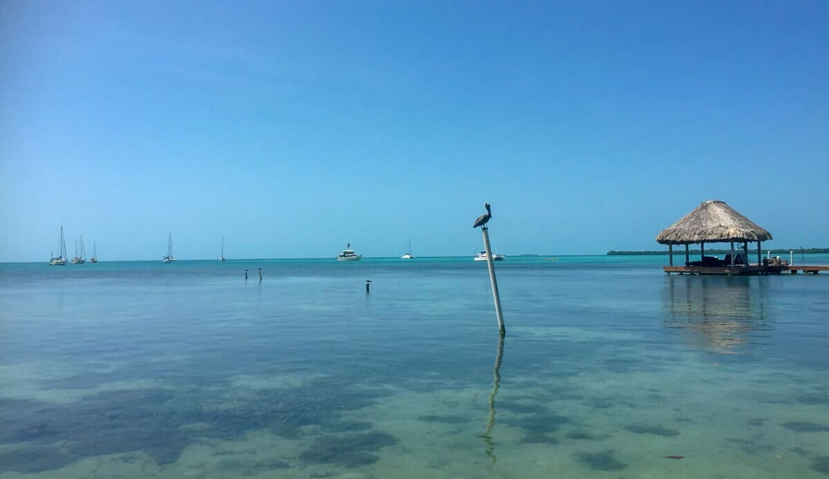 Playing in the water on a visit to the tropical island of Caye Caulker