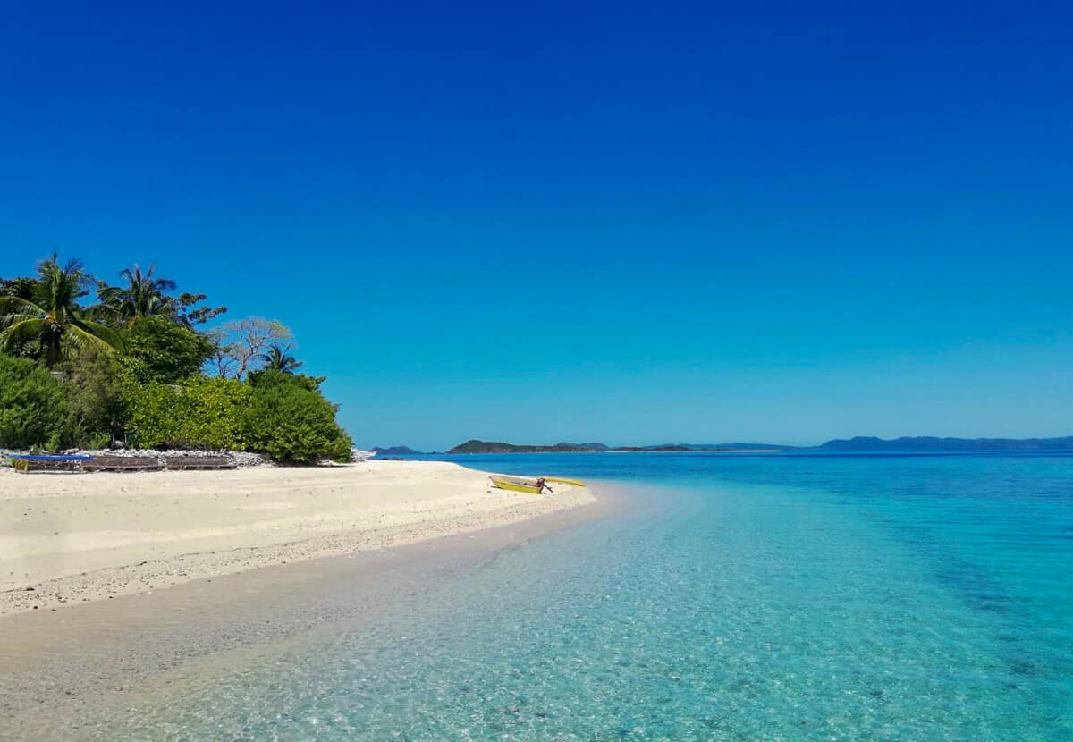 Perfect beaches on a Meeting Jack Russel Terrier Puppys on TAO Philippines expedition
