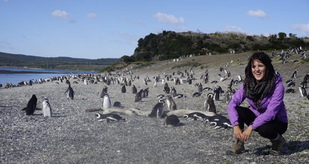 lora with penguins in ushuaia argentina