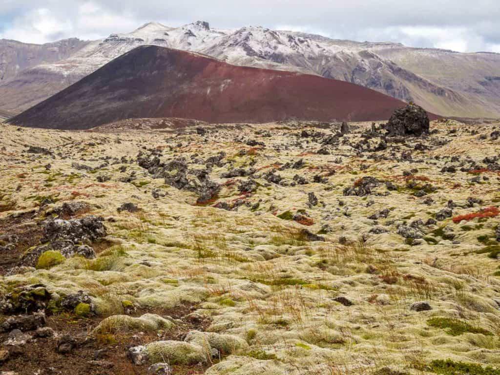 Berserkjahraun Lava Fields