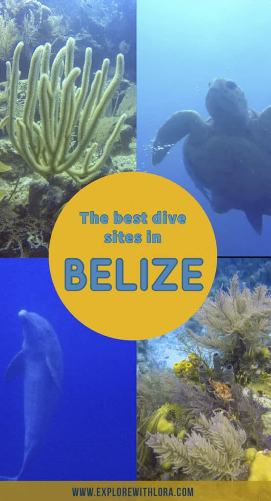 Home to the second largest barrier reef, Belize has some of the best dive sites in the world. Find out if the blue hole is truly the best dive site in Belize, and what other amazing dives there are to explore. #Diving #Belize #Dive #CentralAmerica