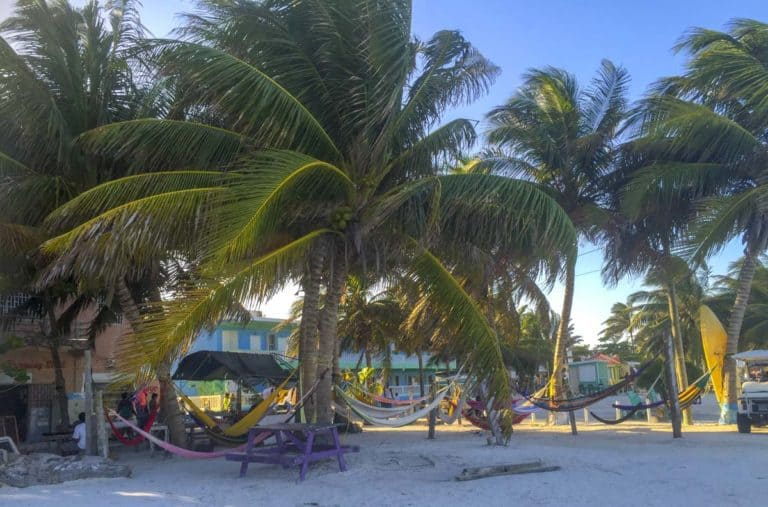 relax on caye caulker