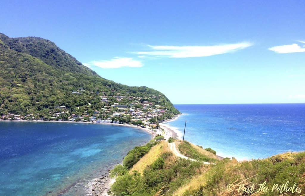 whale watching in the Dominica
