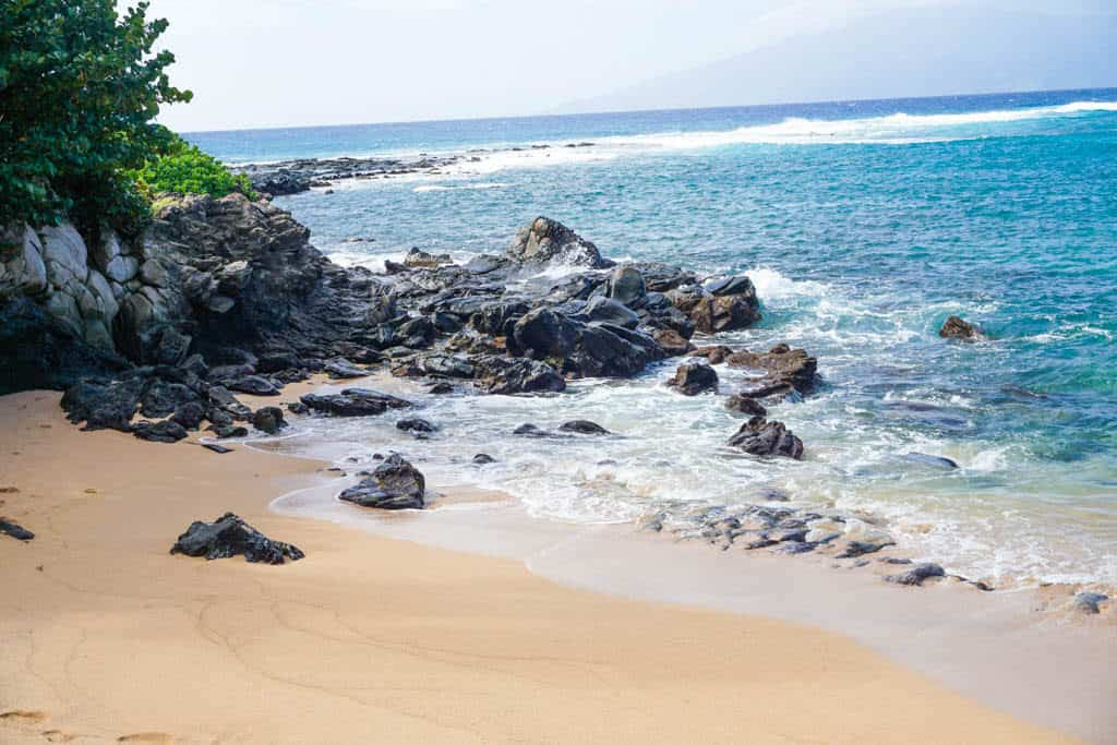 whale watching in maui hawaii