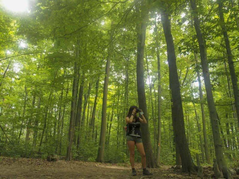hiking in toronto ravines