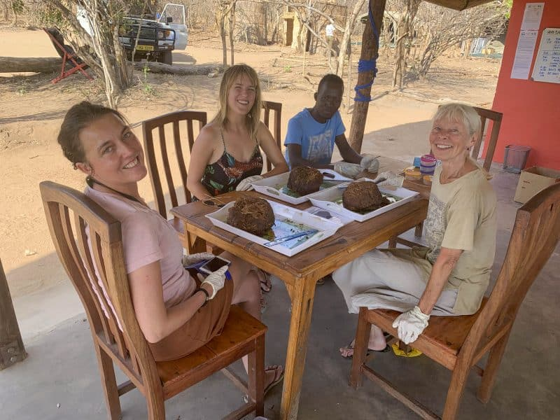 analyzing elephant dung with biosphere expeditions