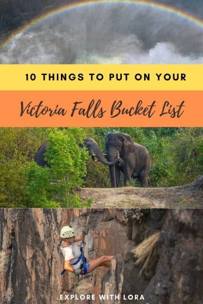pinterest pin things to do in livingstone zambia