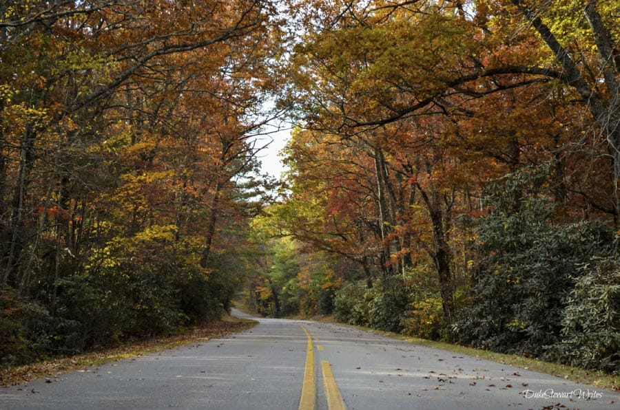 asheville north carolina is one of the best places to travel in october 2020 for the fall colors