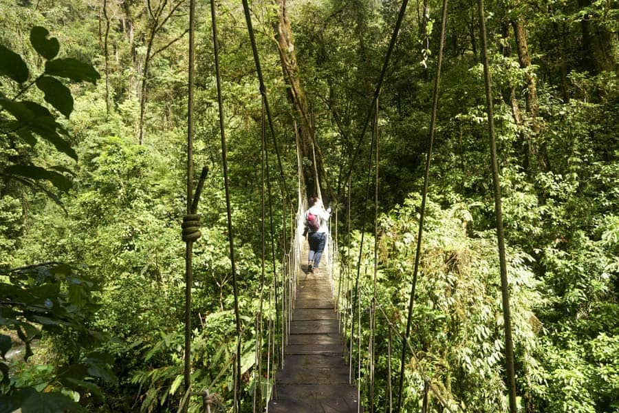 hiking is one of the best things to do in monteverde costa rica