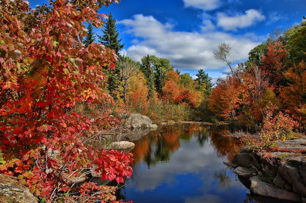 fall colors on the east coast of canada