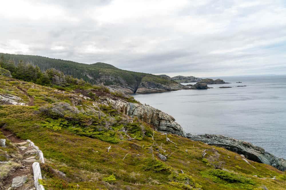 Biscan Cove Path east coast trail