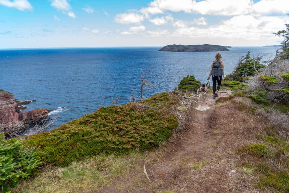 hiking on the east coast trail