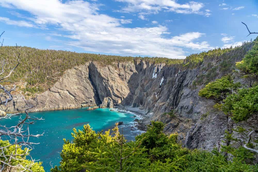 Stiles Cove east coast trail