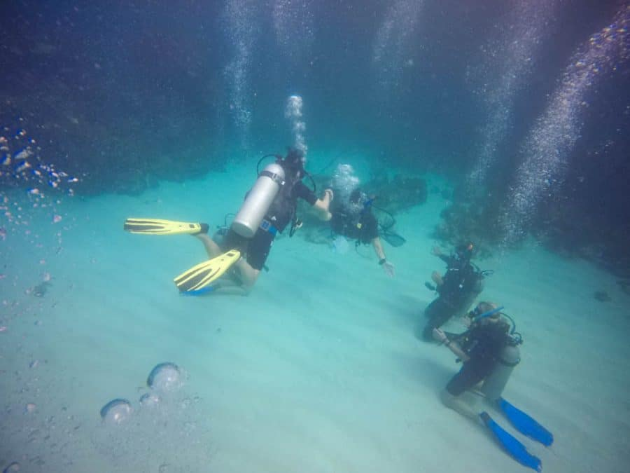 learning to dive in utila