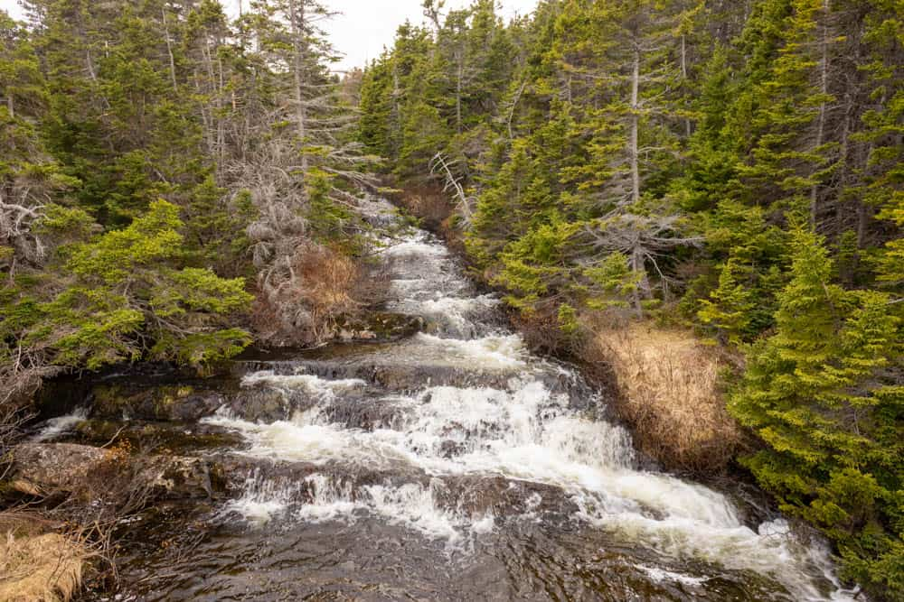 waterfall on silver head mine path east coast trail