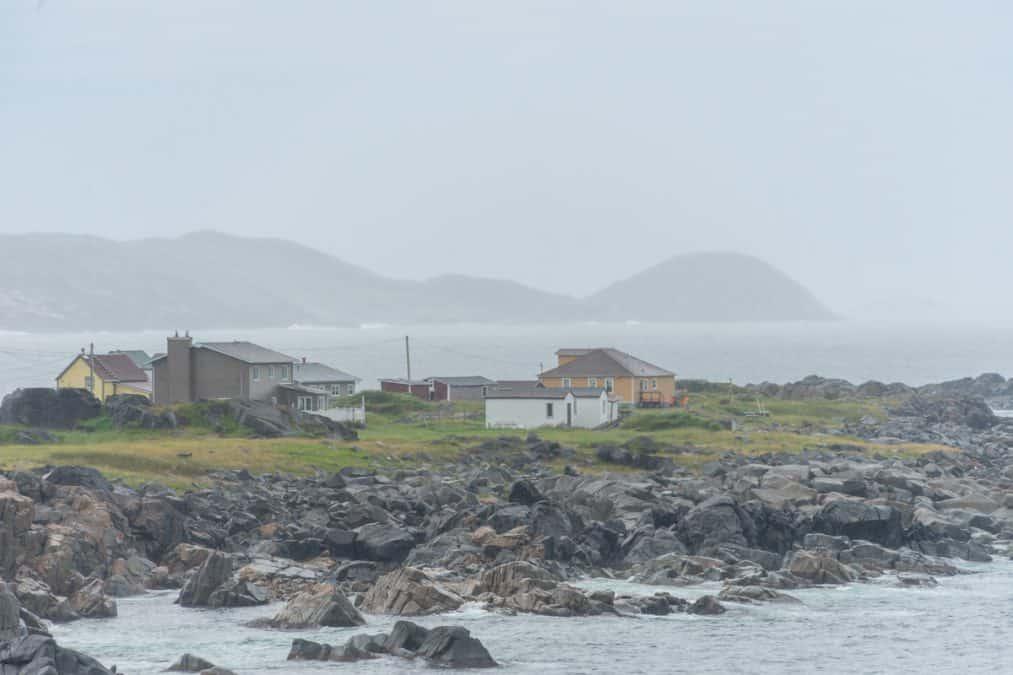 oliver's cove path fogo island