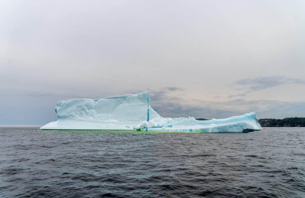 icebergs twillingate newfoundland