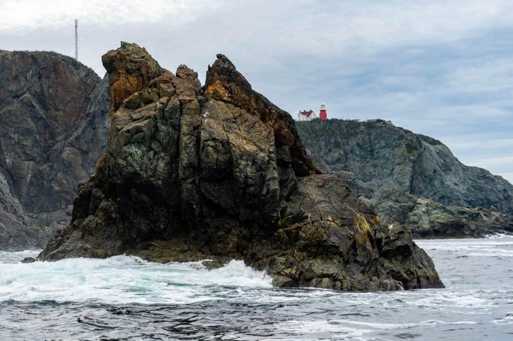 Boat Tour in Twillingate, Newfoundland