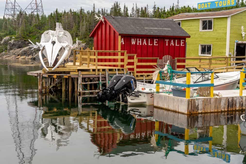 captain daves fishing museum