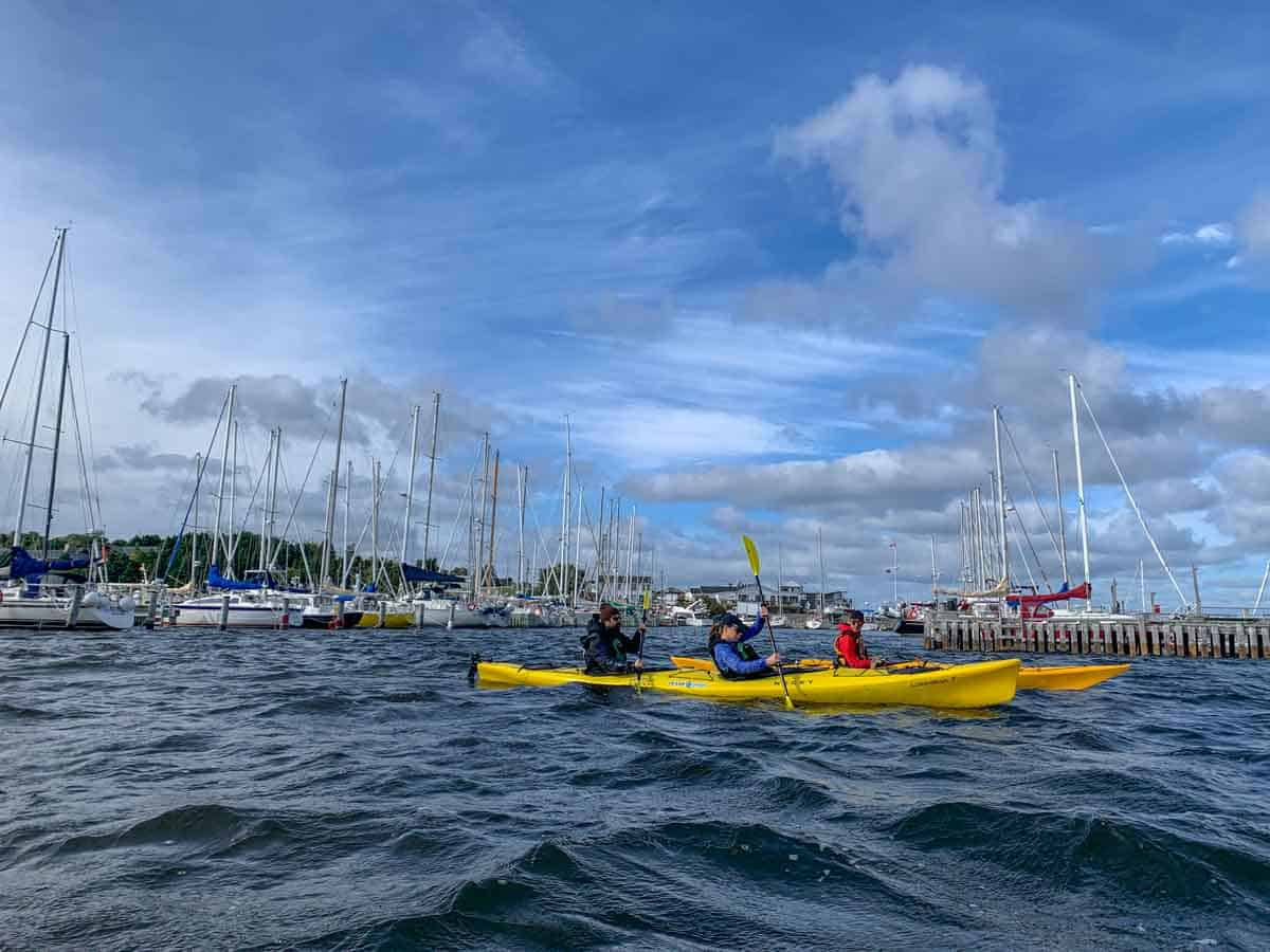 kayaking conception bay south