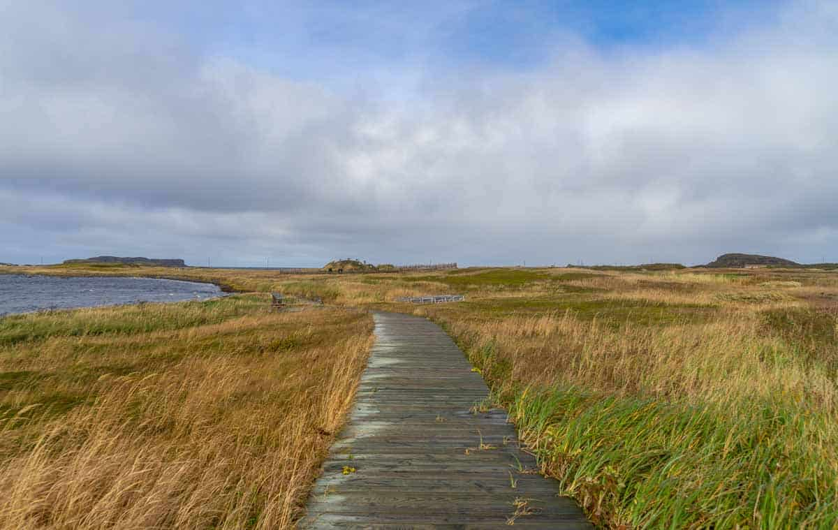 l'anse aux meadows on the northern arm of Newfoundland