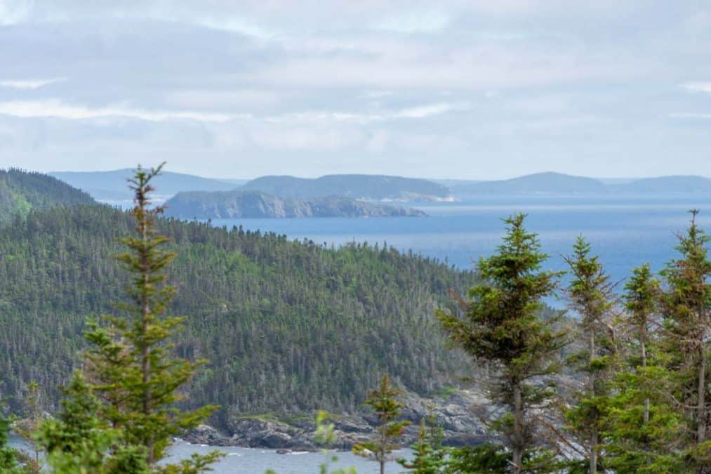 bay of exploits newfoundland