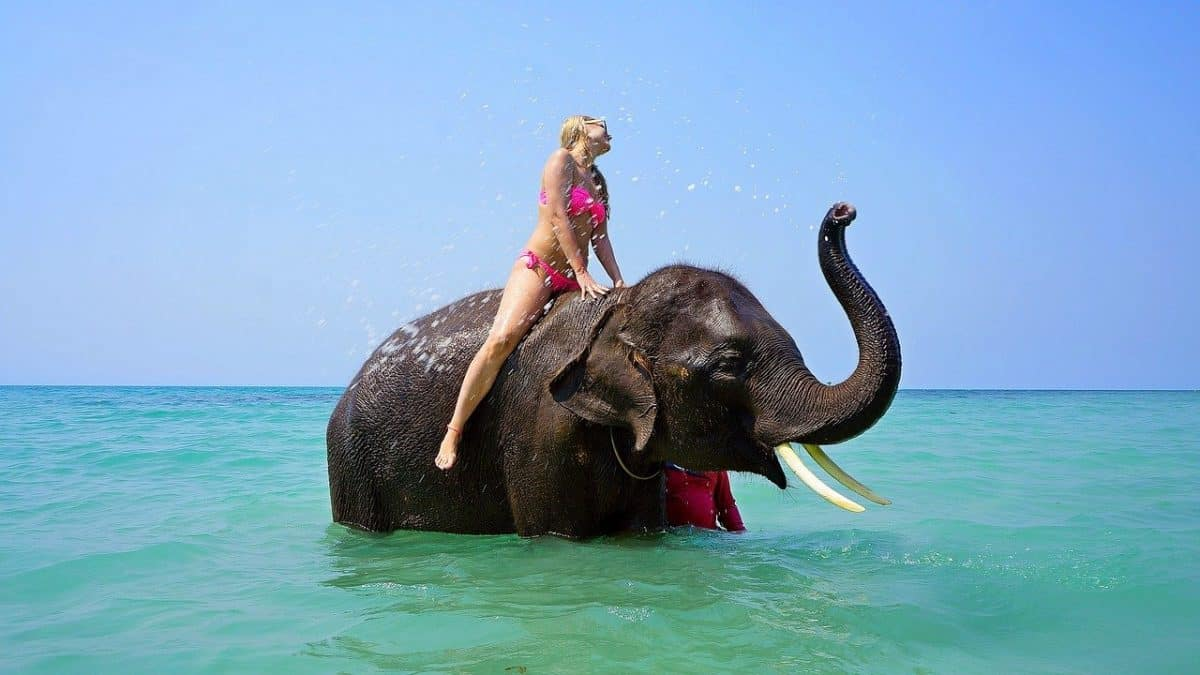 girl riding an elephant in water