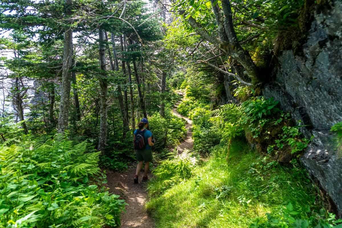 skerwink trail newfoundland