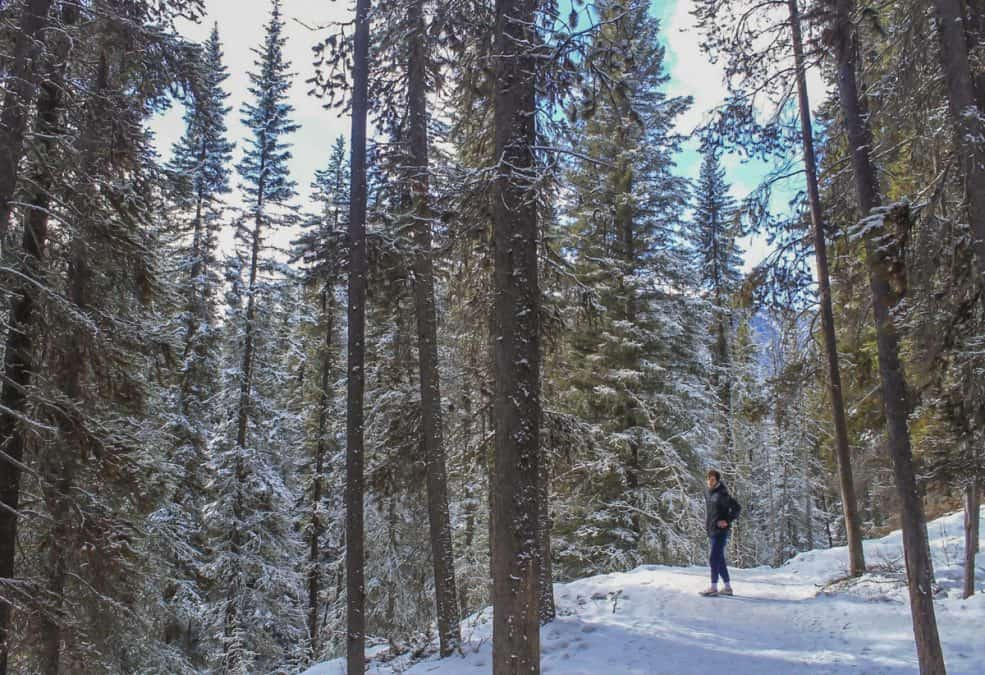 canmore winter hikes