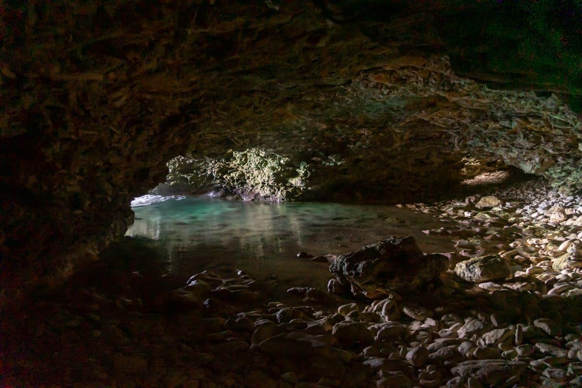 Swimming inside Animal Flower Cave