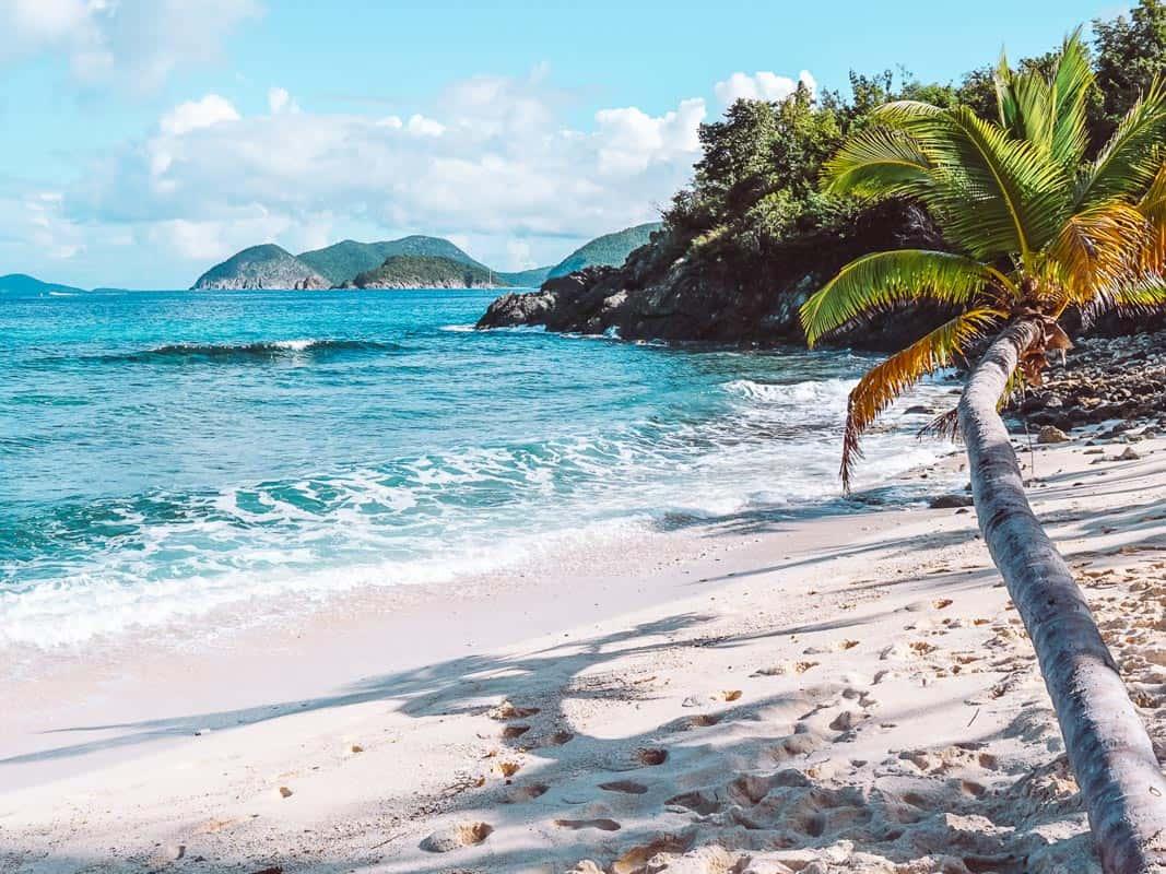 beach in st. john us virgin islands