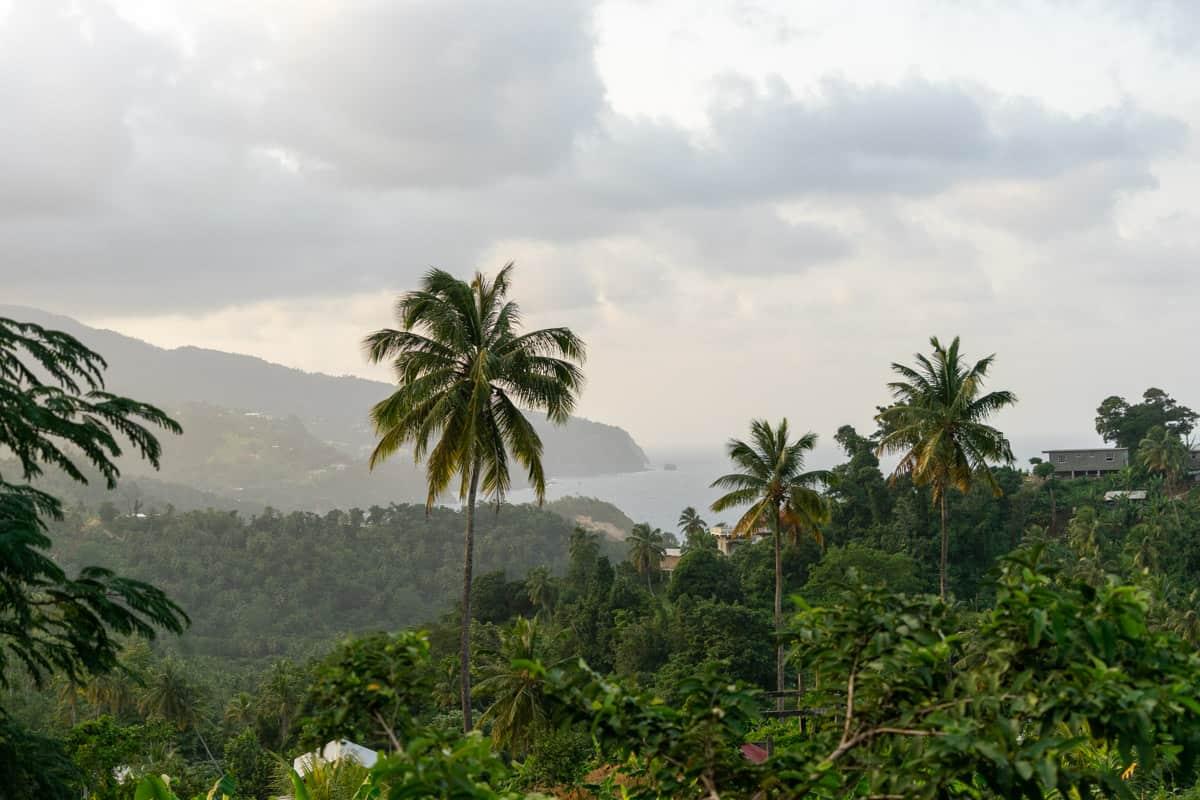 east coast dominica