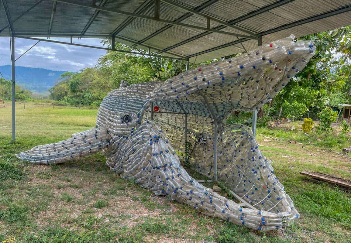 whale made out of plastic bottles