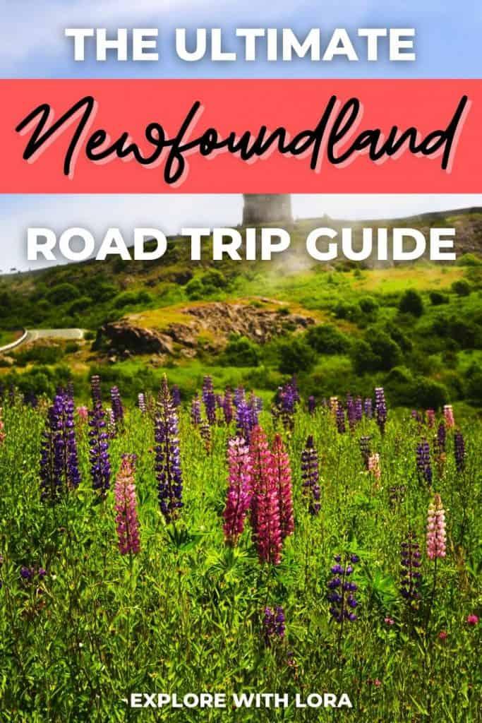 road trip in newfoundland pin